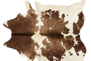 Photograph of Cow Hide Rug