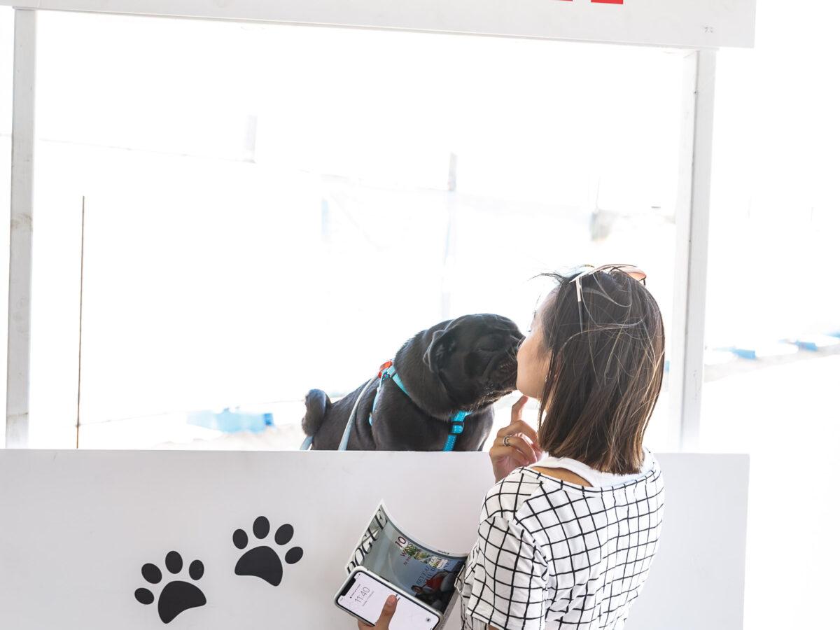 Custom Built Puppy Kissing Booth
