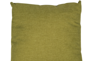 Photograph of Pea Green Cushion