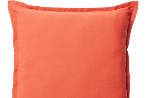 Photograph of Burnt Orange Cushion