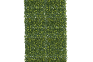 Photograph of Box Hedge Wall Panel – 2.5mH x 1mW