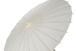 Photograph of Paper Parasol White