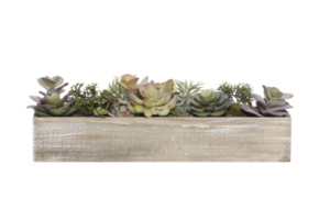Photograph of Artificial Greenery - Succulents in Timber Tray