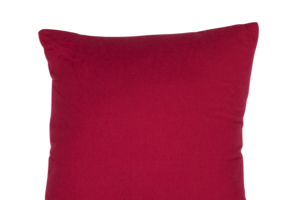 Photograph of Fuschisa Cushion