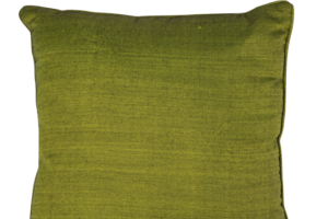 Photograph of Moss Green Cushion – 42cmSQ