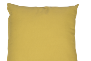 Photograph of Lime Green Nylon Cushion